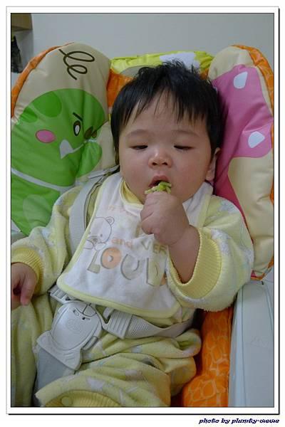 副食品-花椰菜 (9)