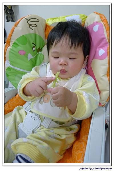 副食品-花椰菜 (10)