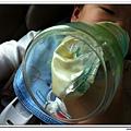 Playtex防脹氣拋棄式奶瓶 (14)