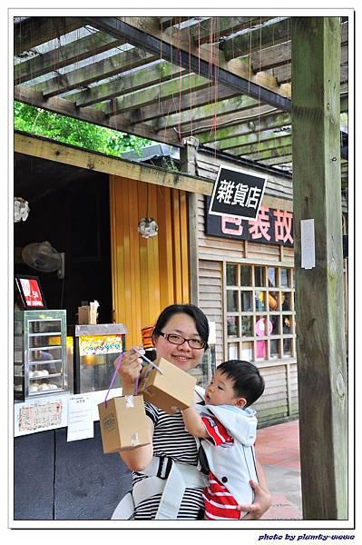 紙箱王蜜蜂故事館 (44)