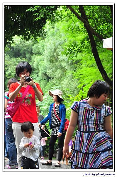 台中薰衣草森林 (65)