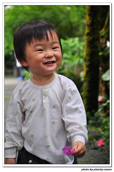 台中薰衣草森林 (66)