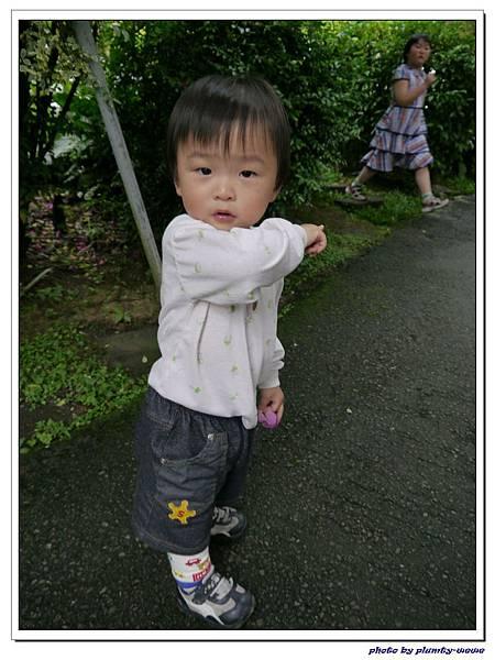 台中薰衣草森林 (79)