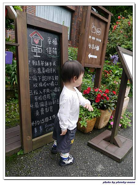台中薰衣草森林 (83)