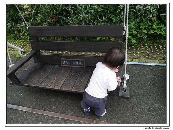 台中薰衣草森林 (84)