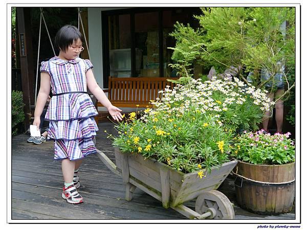 台中薰衣草森林 (86)