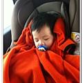 汽座頭枕 (4)