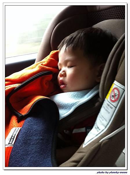 汽座頭枕 (5)