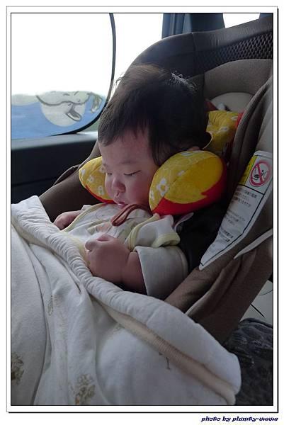 汽座頭枕 (11)