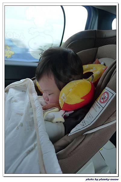 汽座頭枕 (12)