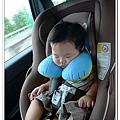 汽座頭枕 (25)