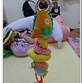 玩具魚 (6)