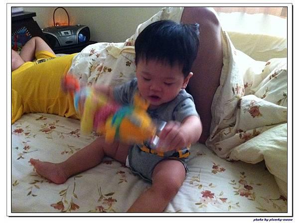 玩具魚 (14)