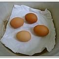 副食品-水煮蛋 (7)