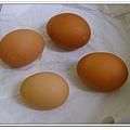 副食品-水煮蛋 (8)