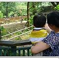 壽山動物園 (71)