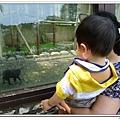 壽山動物園 (75)