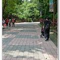 壽山動物園 (15)