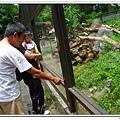 壽山動物園 (28)