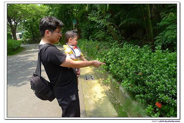 壽山動物園 (30)