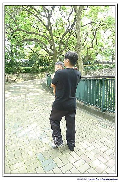壽山動物園 (90)