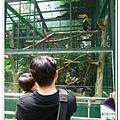 壽山動物園 (32)
