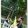 壽山動物園 (33)