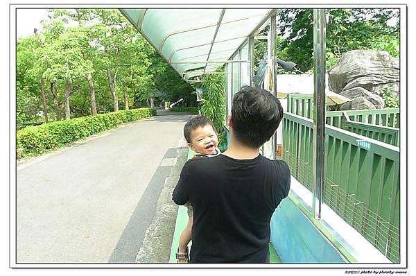 壽山動物園 (96)