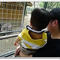壽山動物園 (37)