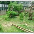 壽山動物園 (42)