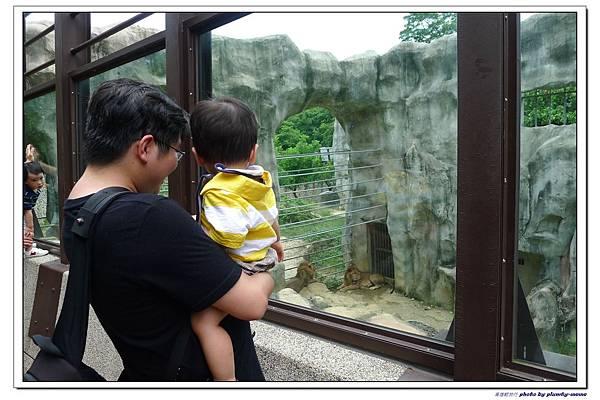 壽山動物園 (45)