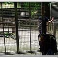 壽山動物園 (48)