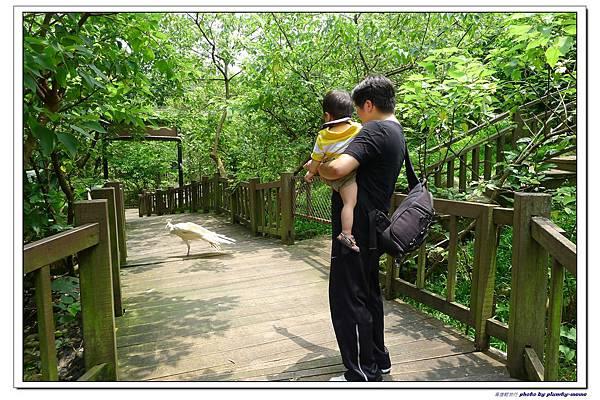 壽山動物園 (56)