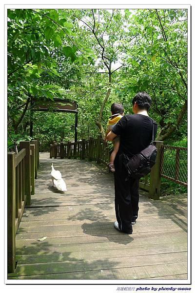 壽山動物園 (58)