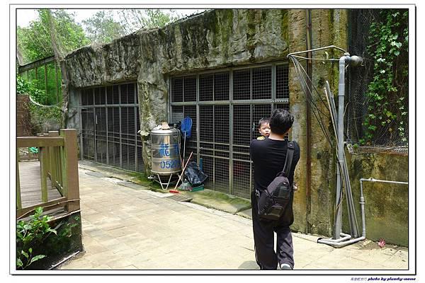 壽山動物園 (63)