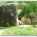 壽山動物園 (69)