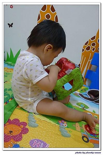 《Lamaze拉梅茲嬰幼兒玩具》哪個窗口適合我