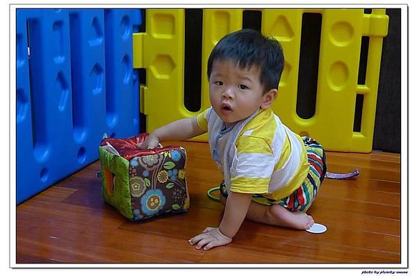 《Lamaze拉梅茲嬰幼兒玩具》哪個窗口適合我 (4)