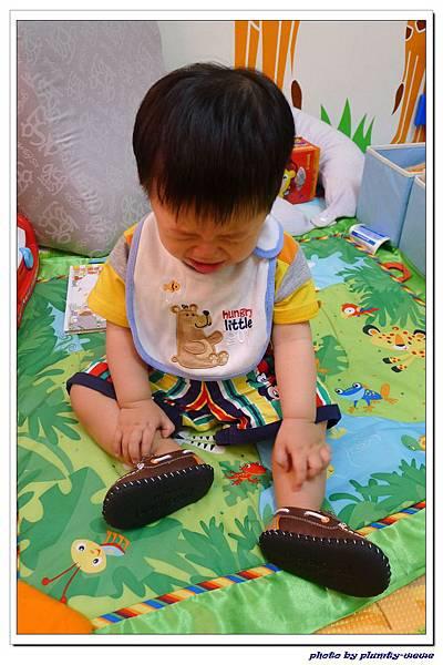 Pediped學步鞋 (11)