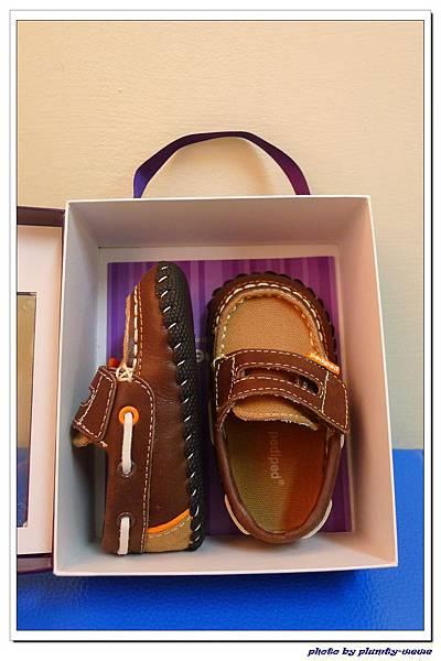 Pediped學步鞋 (24)