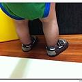 Pediped學步鞋 (34)
