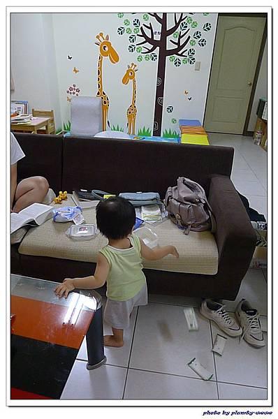 13M18D-客廳放風 (3)