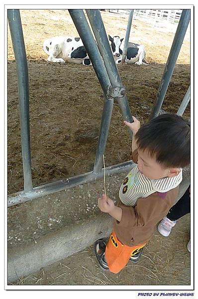 小書蟲PG-in 台中西屯東海牧場 (2)