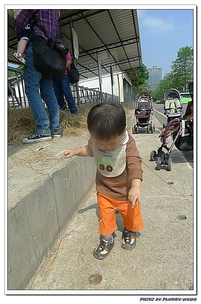 小書蟲PG-in 台中西屯東海牧場 (6)