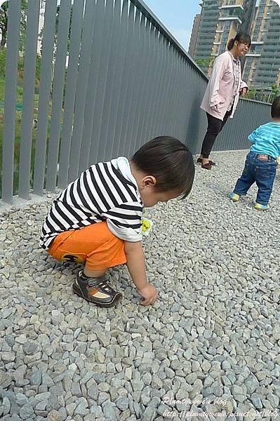 小書蟲PG-秋紅谷  (41)