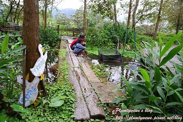 花泉農場-5小動物近距離接觸 (4).JPG