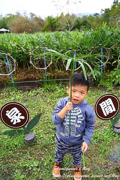 花泉農場-景觀環境 (26).JPG