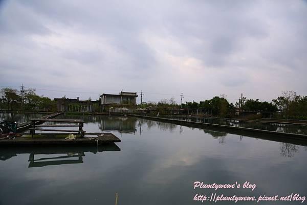 勝洋水草-2釣魚體驗 (14).JPG