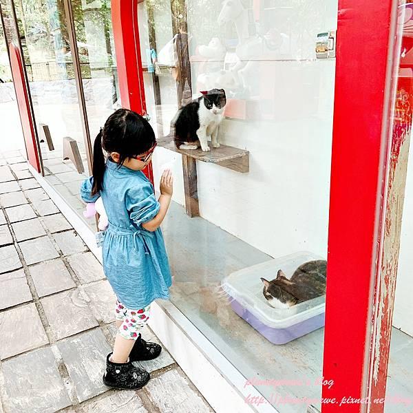 1212綠盈農場_201213_49.jpg