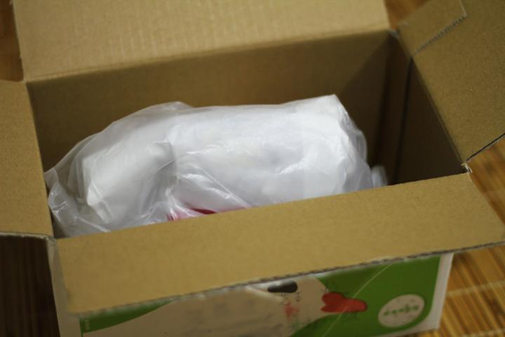 2010 來自他鄉的包裹